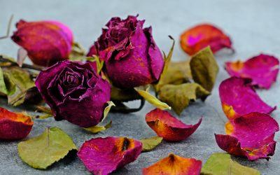 Zašto ljubav boli